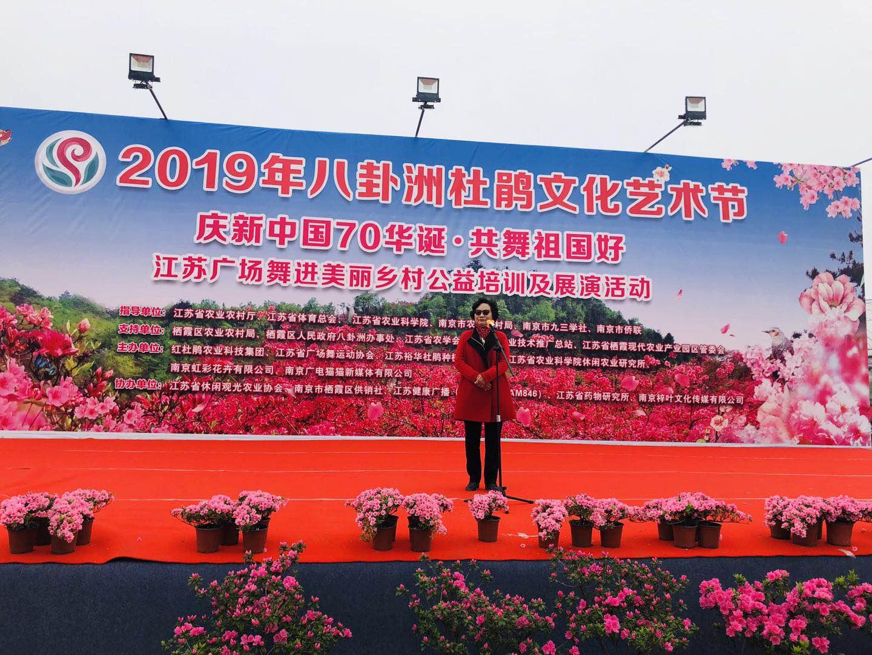 惊艳!2019年八卦洲杜鹃文化艺术节盛大开幕!